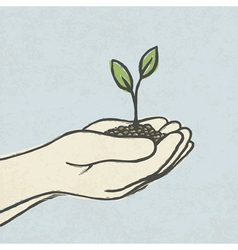 hands with plant vector image vector image