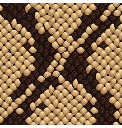 Seamless snake skin texture vector image
