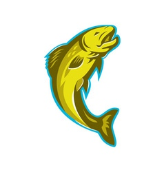 trout fish jumping retro vector image vector image
