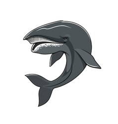 Whale or cachalot isolated mascot icon vector