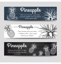 Horizontal banners template with pineapple vector image vector image
