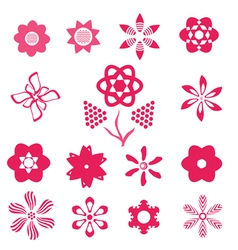 pink flowers vector image