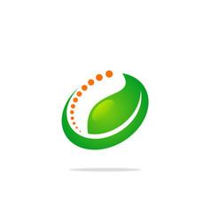 beauty green leaf logo vector image vector image