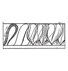 Leaf enrichment moulding patterns vintage vector
