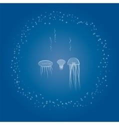 sea animals jellyfish and sea stars vector image
