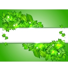 Nature background with green fresh leaves vector