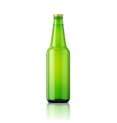 Green beer bottle template vector image