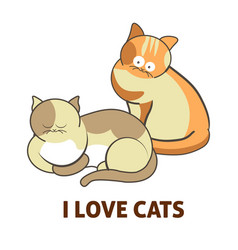 I love cute cats pets or kittens playing or posing vector