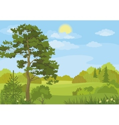 Summer landscape with trees and sky vector image