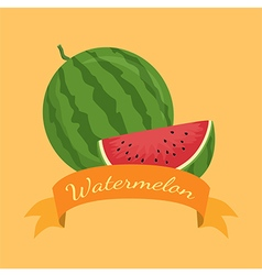 Watermelon Fruit Banner Orange vector image vector image