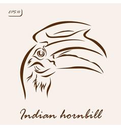 Indian hornbill vector