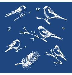 The collection of snow-covered birds vector
