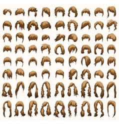 women hairstyles and haircuts in brown tones vector image