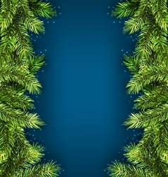 Natural framework with fir twigs copy space for vector