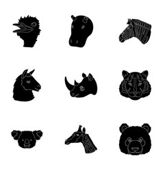 a set of icons of wild animals predatory and vector image vector image