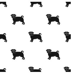 Bulldog single icon in black stylebulldog vector