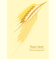 Wheat vertical background vector image