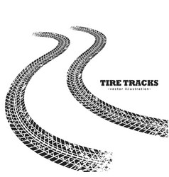 Road tire tracks on white background in vector