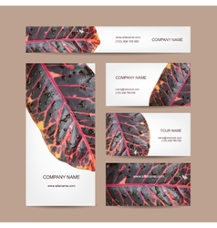 Business cards design leaf texture vector image vector image