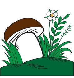 large white mushroom vector image
