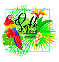 Summer sale composition with tropical plants and vector
