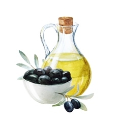 Watercolor olives and olive oil vector