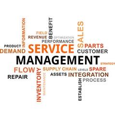 word cloud service management vector image