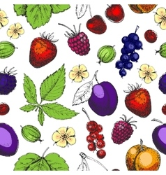 Seamless hand drawn pattern with fruits and vector
