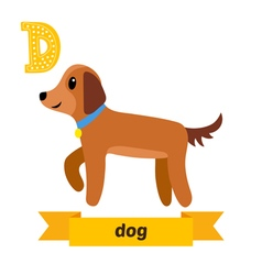 Dog d letter cute children animal alphabet in vector