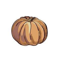 Doodle pumpkin vector