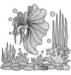 Fighting fish coloring page vector