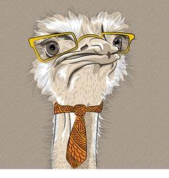 Funny ostrich bird hipster vector