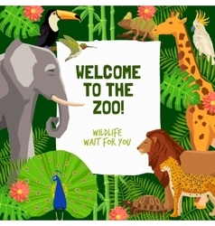 Colorful poster with invitation to visit zoo vector