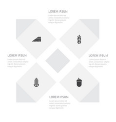 Icon dacha set of maize grain area and other vector