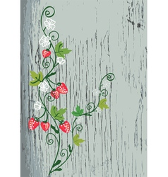 Strawberry on the wood texture vector image