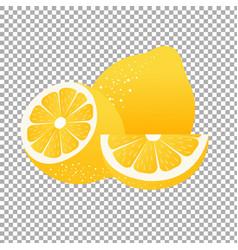 lemon label vector image