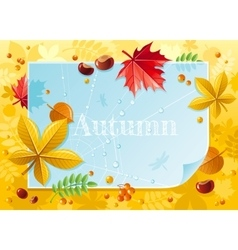 macro autumn forest pattern vector image