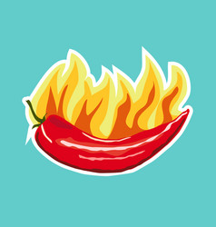Chilli pepper icon sticker flat style vector