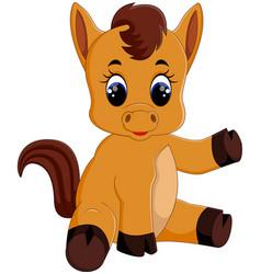 Cute baby horse sitting vector