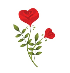 two stylised red roses in the form of heart vector image vector image