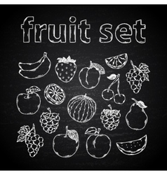 Fruit set on a chalk board vector