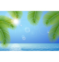 Sunny blue sky sea and palm branches vector image