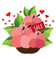 sale bouquet of flowers colored for design vector image