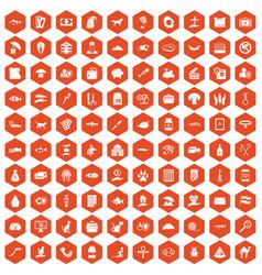 100 cat icons hexagon orange vector
