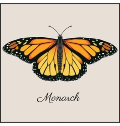 Monarch butterfly card flat vector