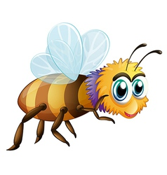 A big fat bee vector image vector image