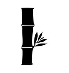 bamboo asian tree vector image