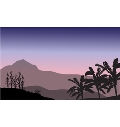 Banana tree in hill scenery vector