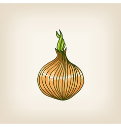 Shiny hand drawn onion vector