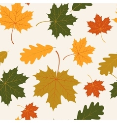 Seamless with autumn maple and oak leaves vector